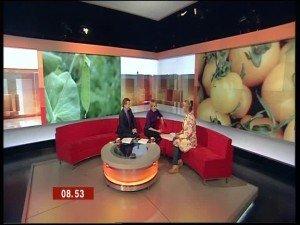 bbcorgb-300x225